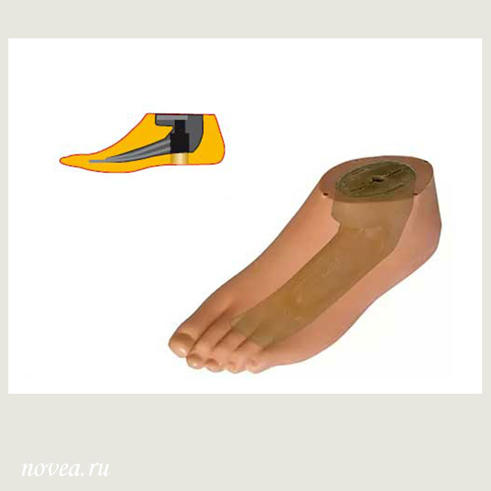Type Male Foot Prosthesis